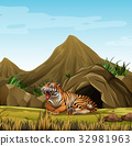 Wild tiger in front of cave 32981963