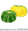 南瓜 水彩画 蔬菜 32982006