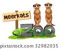 wildlife, animal, zoo 32982035