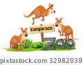 Three kangaroos at the zoo sign 32982039