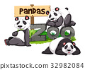 Three pandas in the zoo 32982084