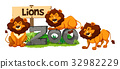 Three lions in the zoo 32982229