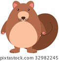 Cute squirrel on white background 32982245