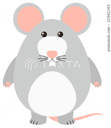 Gray mouse on white background 32982265