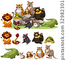 Different types of wild animals 32982301