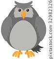 Gray owl on white background 32982326