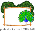 Frame template with peacock in bush 32982348