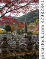 化野念佛寺 楓樹 紅楓 32982841