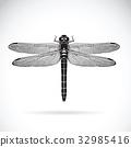 蜻蜓 矢量 矢量图 32985416