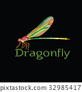 Vector of colorful dragonfly design. pet 32985417