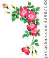 วัสดุกรอบบนของดอกกุหลาบบานเดียวสีแดง 32987188