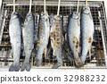 魚 串燒 加鹽燒烤或烤製 32988232
