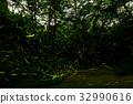 萤火虫 森林 树林 32990616