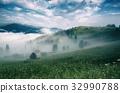fog,forest,morning 32990788
