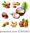 Nuts Realistic Set 32991855