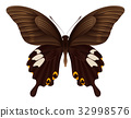 Beautiful butterfly isolated on a white background 32998576