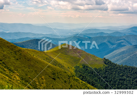small peak on hillside with forest 32999302
