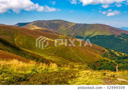 beautiful Carpathian Mountain Range 32999309