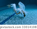 Woman shows an underwater show. 33014108