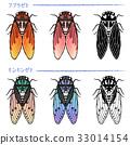 locust, large, brown 33014154