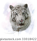White Tiger watercolor 33018422