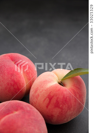 domestic peach birch black background stock photo 33025329 pixta pixta