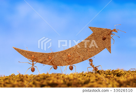 Ants carry rising arrow for business graph, team 33026510