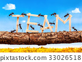 Ants carrying wording team, teamwork concept 33026518