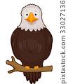 Bird Bald Eagle Branch 33027136
