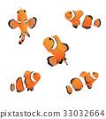 Clown anemonefish 33032664