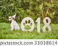2018 狗 狗狗 33038614