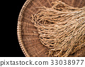 Brown paddy rice closed up background 33038977