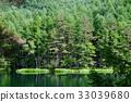彌遮迦池塘 綠色 背景 33039680