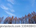 푸른, 하늘, 수목 33040843