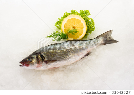 Fresh perch fish on ice. Ready for cooking. 33042327