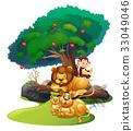 scene, wildlife, animal 33049046