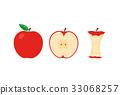 vector, vectors, fruit 33068257
