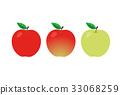 矢量 水果 蘋果 33068259