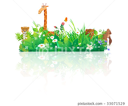 animals nature backgrounds 33071529