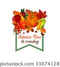 autumn, fall, foliage 33074128