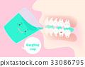 嘴 牙齿 矢量 33086795