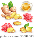 Set vector illustration of a fresh ginger root 33089603