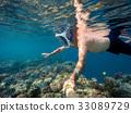 snorkel, snorkeling, fish 33089729