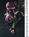 紫色 蔬菜 拼盘 33095866
