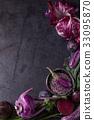 紫色 蔬菜 甜菜 33095870