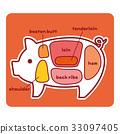 猪 猪肉 图解 33097405