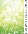 flower, chamomile, green 33099650