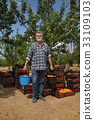 Agriculture, farmer in apricot orchard 33109103