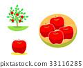 蘋果 蘋果樹 樹木 33116285