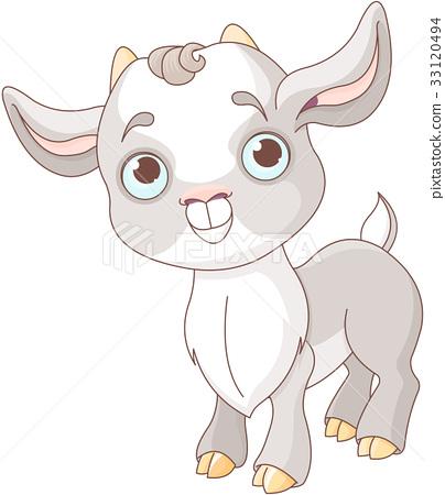 Baby Goat 33120494